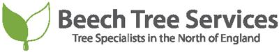 Beech Tree Services